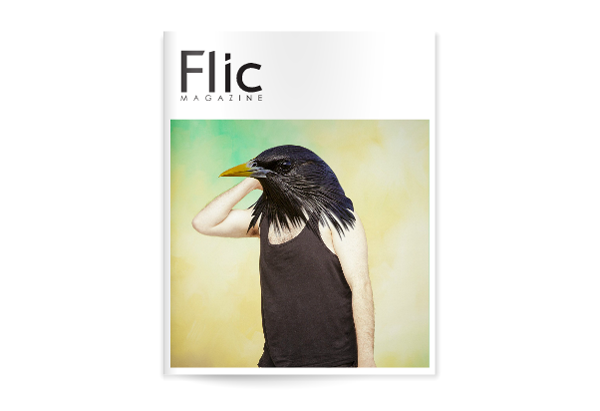 Flic Magazine Issue#9_Portada Issuu